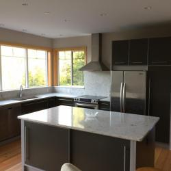 medium grey kitchen cabinets with silver frames natural stone countertops