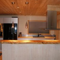 Contemporary silver aluminum cabinets with butcher block countertops